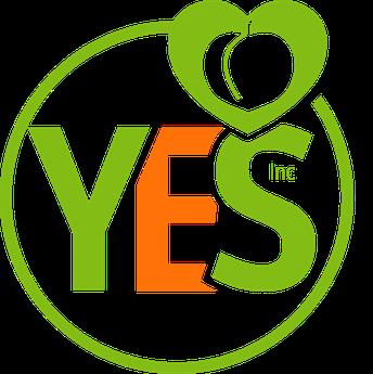 www.yeskidz.com