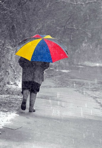What Happens on Rainy Days?