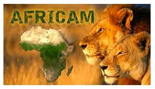 Africam LIVE Cams