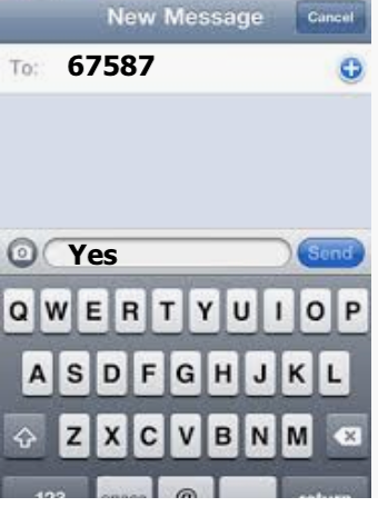 Stay Informed By Text Message