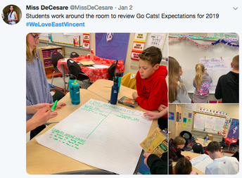 Miss DeCesare's Class Review Go CATS Expectations