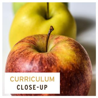 Curriculum Close-Up