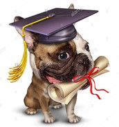 Class of 2018 Diploma Forms