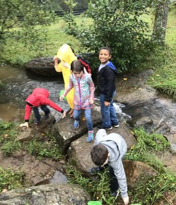 Wildrock Field Trip