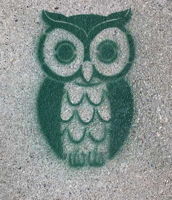 Hoot Placed for 6' Distance Along our Sidewalks