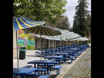 Outside lunch tables and umbrellas