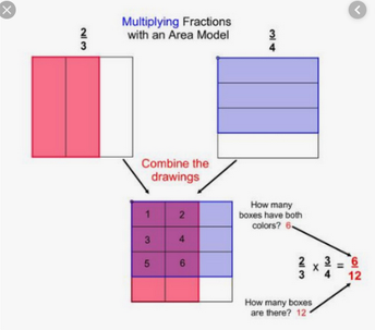Area Model for Multiplying Whole numbers and Fractions