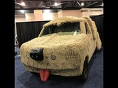 Dog Van from Dumb and Dumber