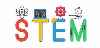 STEM and Dual Language Lottery