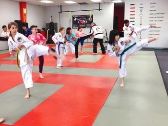 Martial Arts at Tiger Academy