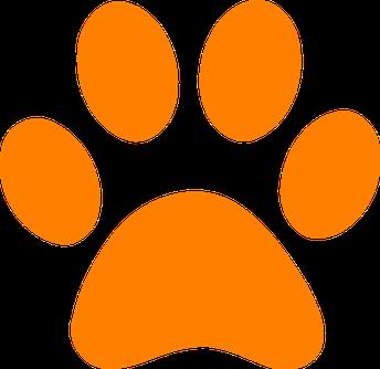 orange puma paw