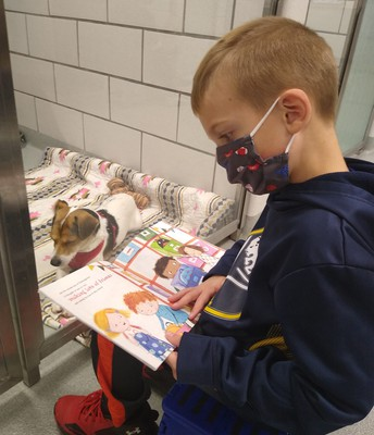 SPCA for the Tale for Two program