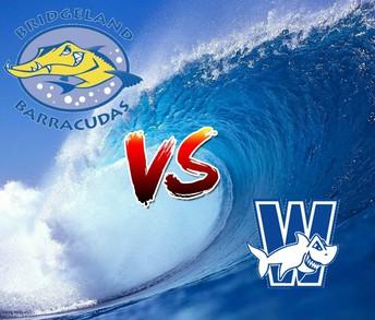 Bridgeland Barracudas v. Wortham Whitesharks
