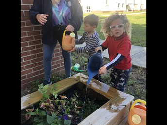Taking Care of our Class Gardens