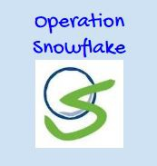 It is time for the Annual Operation Snowflake event!