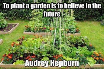 Garden Furniture Needed