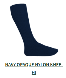 Navy Opaque Nylon Knee Sock