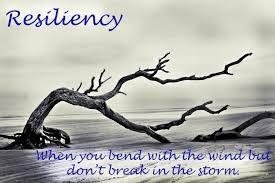 Ramsey Resiliency: