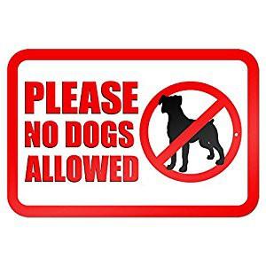 No hay perros (mascotas) en los terrenos de la escuela