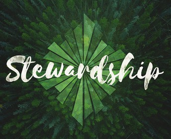 Stewardship Corner