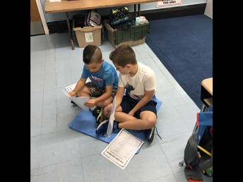 Partnering in Writer's Workshop