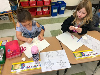 Creating Sea Star Models with Clay