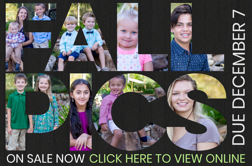 Click here to view and order fall pictures