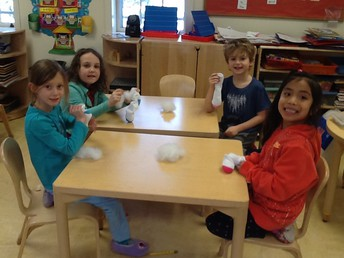 Making Cat toys for the SPCA.