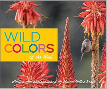 Wild Colors of the West