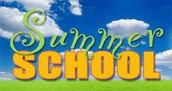 WSD SUMMER SCHOOL