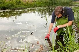 STEM Occupation of the Week: Environmental Scientist