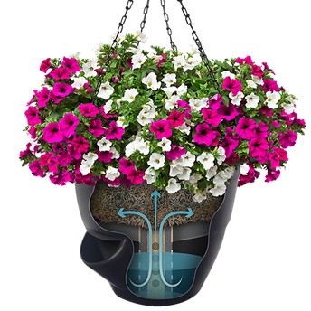 Eliminate Your Fears And Doubts About Sympathy Flower Baskets