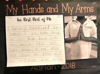 Adrian, My Hands and My Arms..