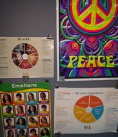 Emotions Poster and Peace Poster in the Gym