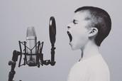 Public Performance & Digital Transmission of Sound Recordings