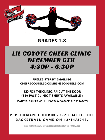 LIL Coyote Cheer Clinic