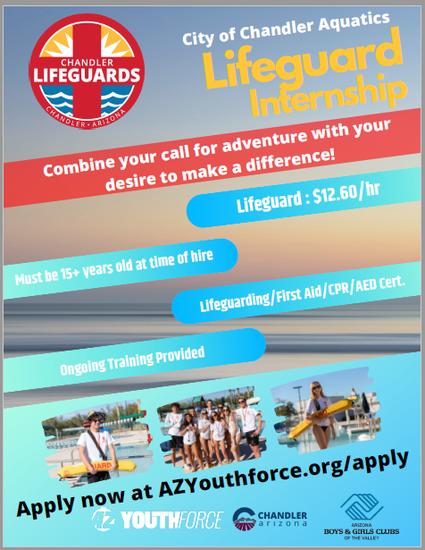Lifeguard Internship Flyer