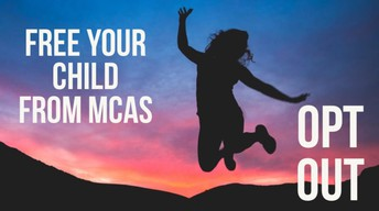 MCAS Opt-Out