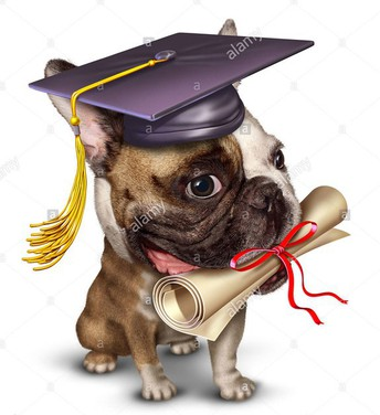 Senior Diploma Orders