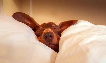 How to prevent fatigue