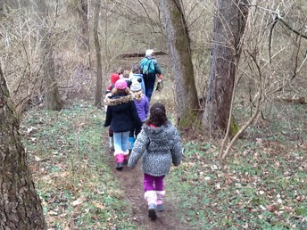 Walking on the trails.