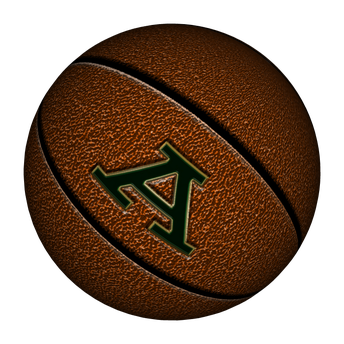 Airedale Basketball