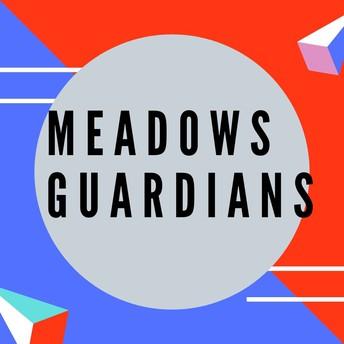 Parents Volunteer for Meadows Guardians