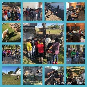 4th grade Wunderlich Farm field trip
