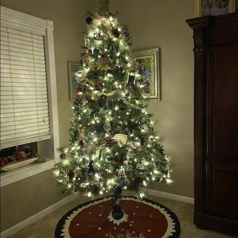 Mrs. Townsend's Tree