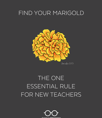 Find Your Marigolds: Surround Yourself With Good People