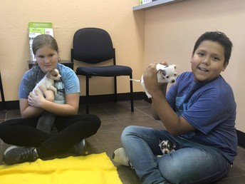MS Outreach to Cleburne Animal Shelter
