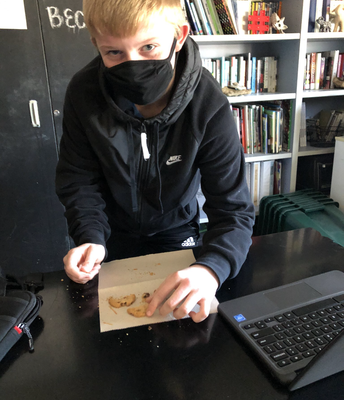 Cookie mining lab in Environmental Science!