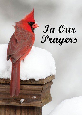 In Our Prayers