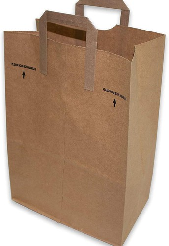 Needed: Brown Paper Bags with Handles
